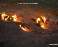 Focul Viu Terca Lopatari ©Marius Voinea