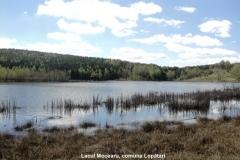 Lacul Mocearu